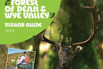 Forest of Dean Tourist Guide Download