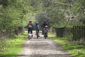 Forest of Dean Cycling Guide Map
